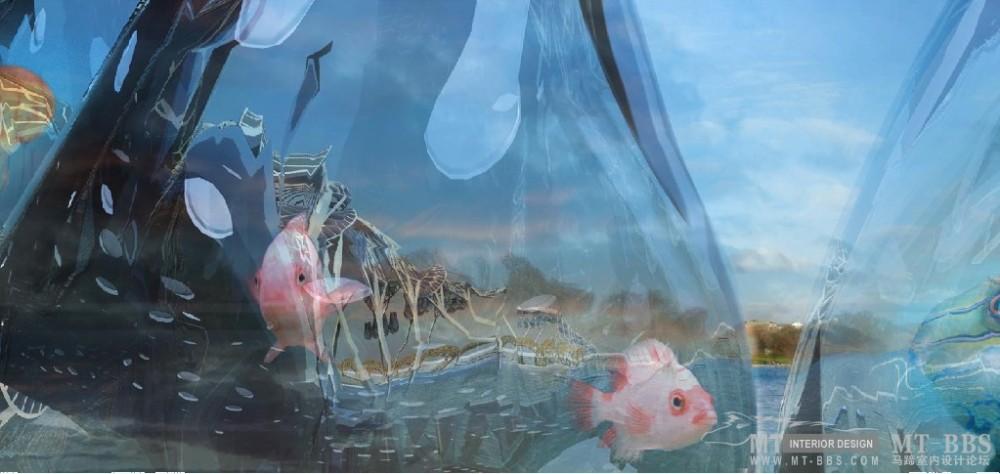 """""""纸鹦鹉螺""""水族馆,""""Brood"""" -- 2009.05.30_2.jpg"""