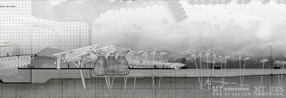 """""""纸鹦鹉螺""""水族馆,""""Brood"""" -- 2009.05.30_6.jpg"""