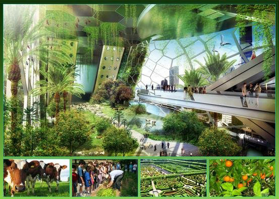 Dragonfly, A Metabolic Farm For Urban Agriculture (12).jpg