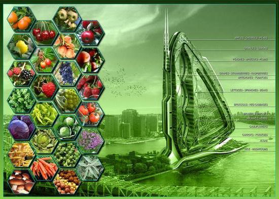 Dragonfly, A Metabolic Farm For Urban Agriculture (18).jpg