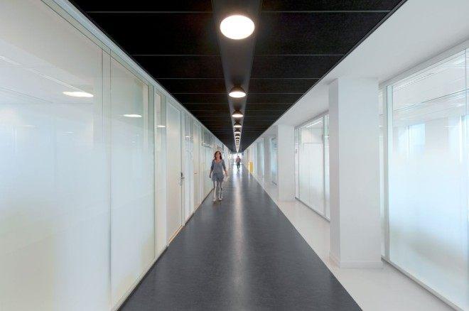 阿姆斯特丹大学新大楼室内设计_17532656m68yy656m74h5x.jpg