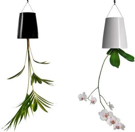 hanging-planter-design.jpg