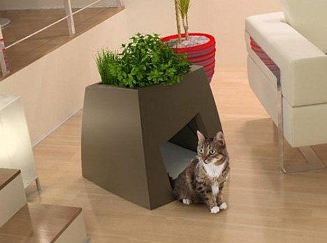 pot-plant-cat.jpg