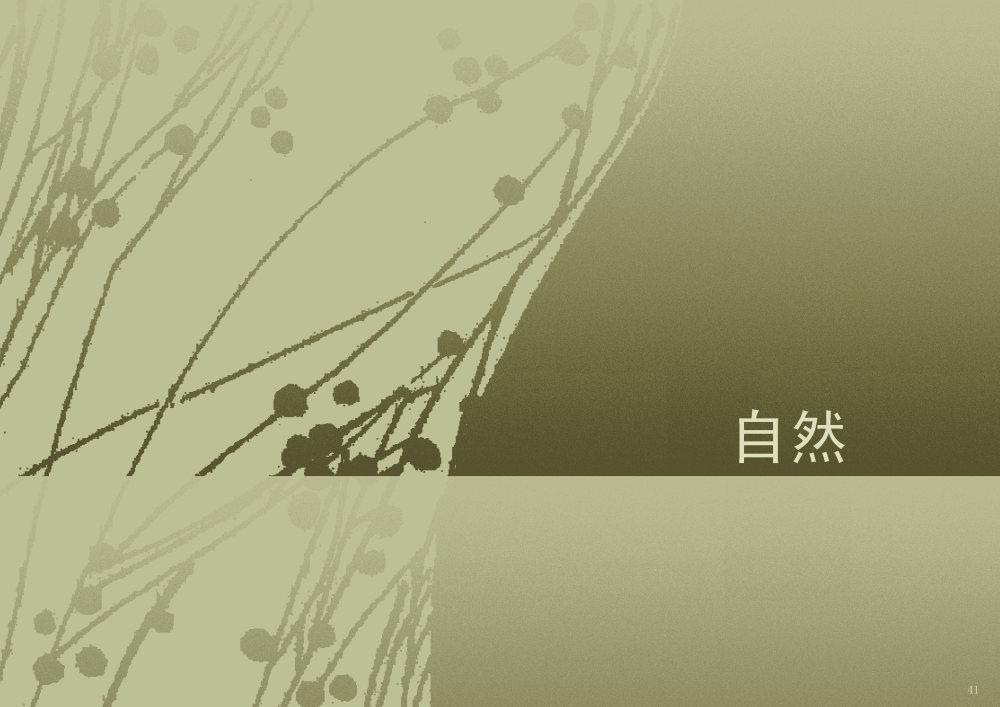 郑中(CCD)--专用地毯高清大图161P_041.jpg
