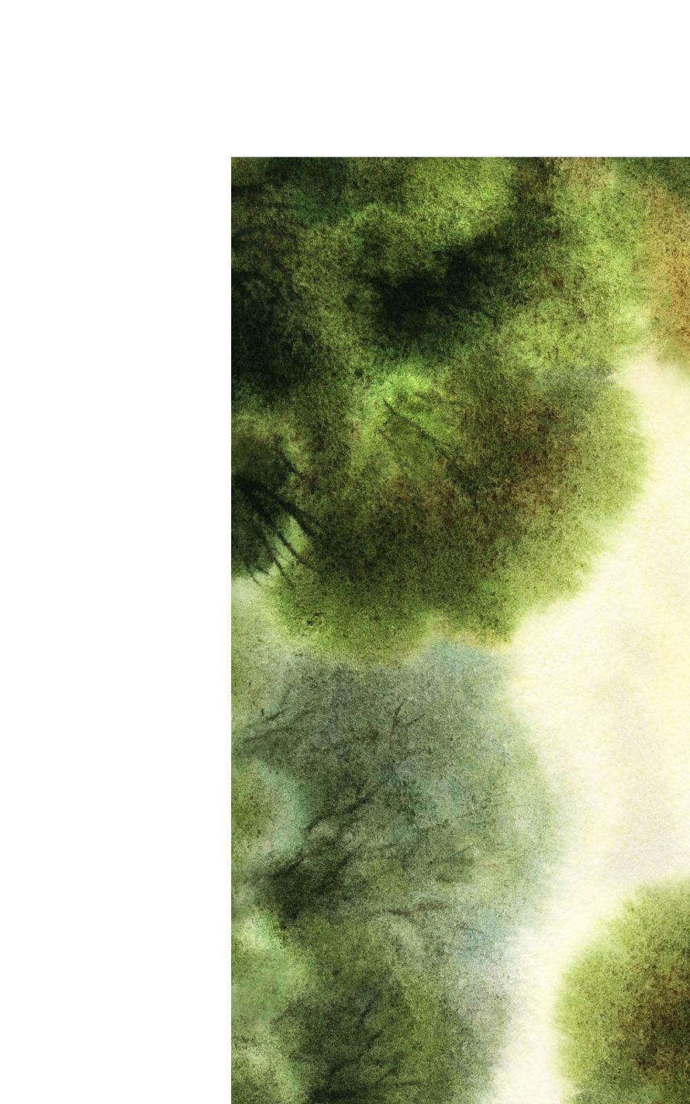 郑中(CCD)--专用地毯高清大图161P_shuicai副本.jpg