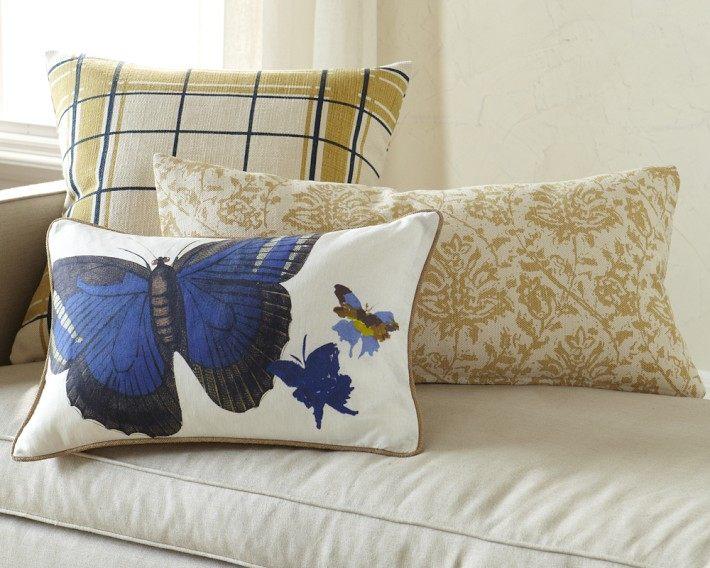 免费分享个人收藏的抱枕,希望同仁们喜欢_img67o.jpg