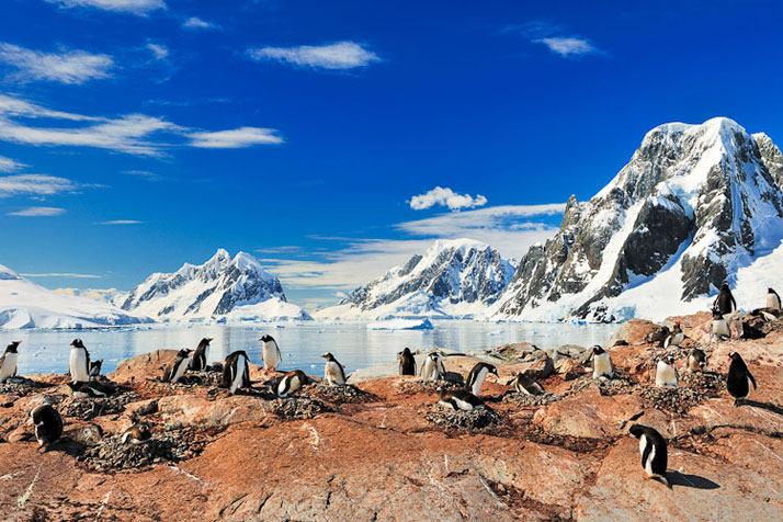 Goudier岛,南极洲