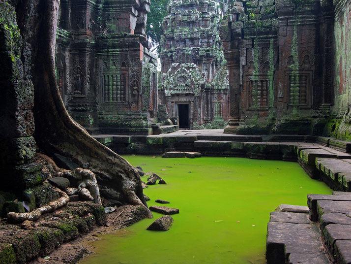 Ta Prohm寺、柬埔寨吴哥窟