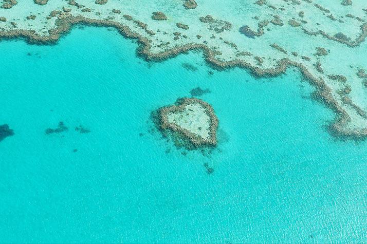 心礁,澳大利亚大堡礁。