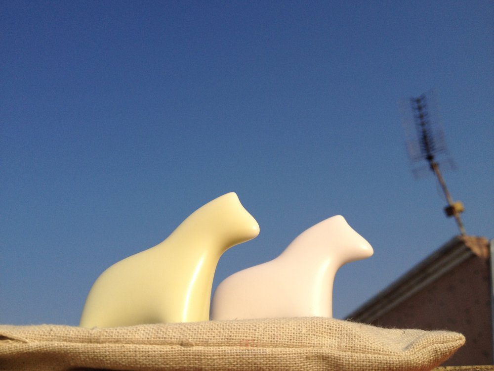 马蹄2013-2014年第四届深圳设计年会活动(年会专题信息收集)_马上拥有一片蓝天。