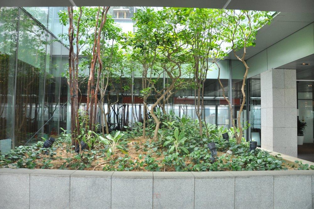 新加坡Orchard Central商业自拍_DSC_0442 (3).JPG