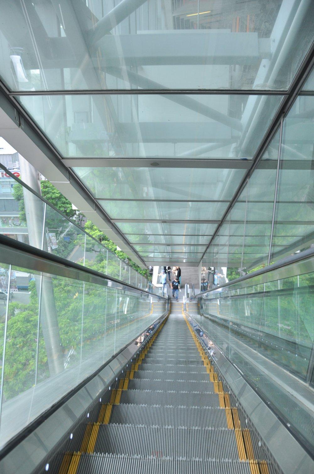 新加坡Orchard Central商业自拍_DSC_0431 (3).JPG