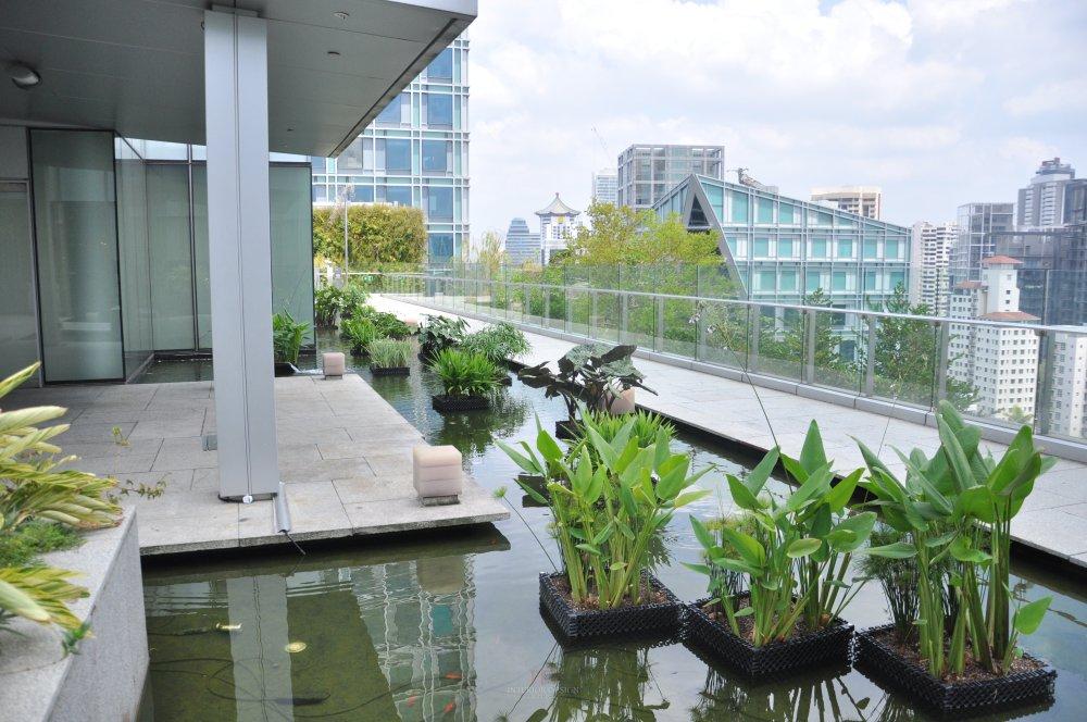 新加坡Orchard Central商业自拍_DSC_0463 (3).JPG
