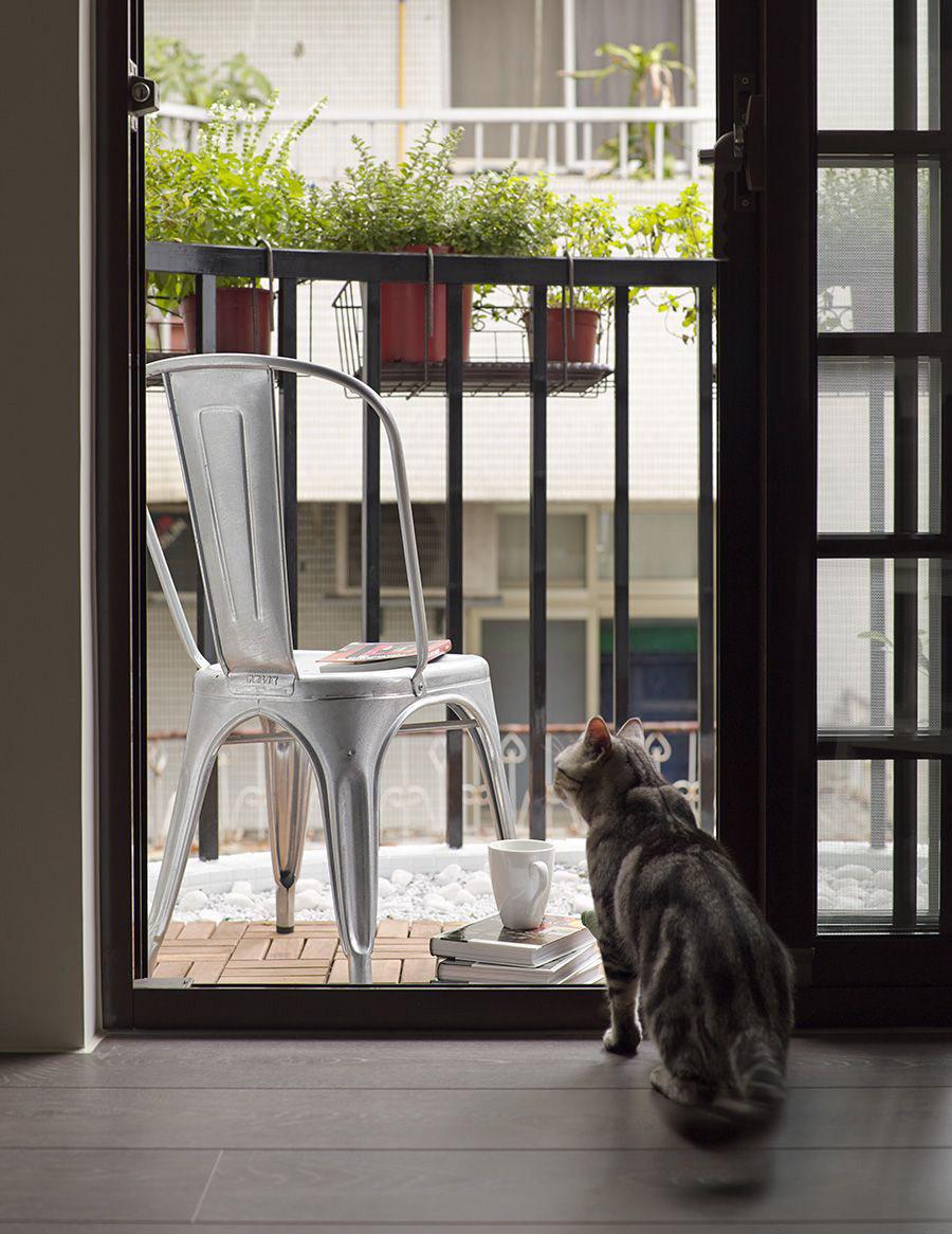 喜欢猫的设计师进,以喵会友!_cat (1).jpg