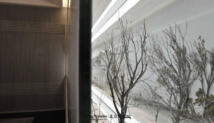 北京集美组--故宫御膳房_9.jpg