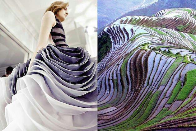 看看设计大师们是如何从大自然中吸取灵感的_28d33b00a9448b1d26e4b1b41e4349af.jpg