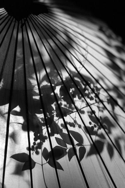 【地平线下的陈设】世界禅者-铃木大拙_59385f739818935c9bd44781918f0ce5.jpg