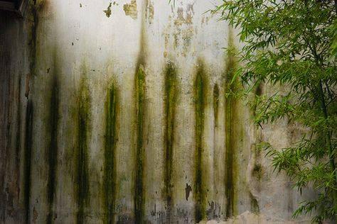 【地平线下的陈设】中国古典园林_453b228eed56d71d650adf0bab4b7ace.jpg