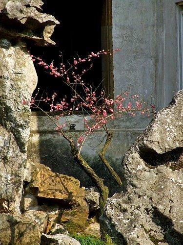 【地平线下的陈设】中国古典园林_63194f8624768f2643c8f767f00f1c98.jpg