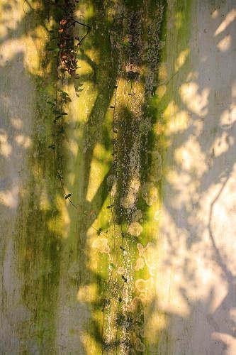 【地平线下的陈设】中国古典园林_gic2781262.jpg