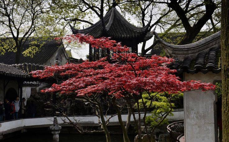 【地平线下的陈设】中国古典园林_8780594323f90faa5819653f31f11848.jpg