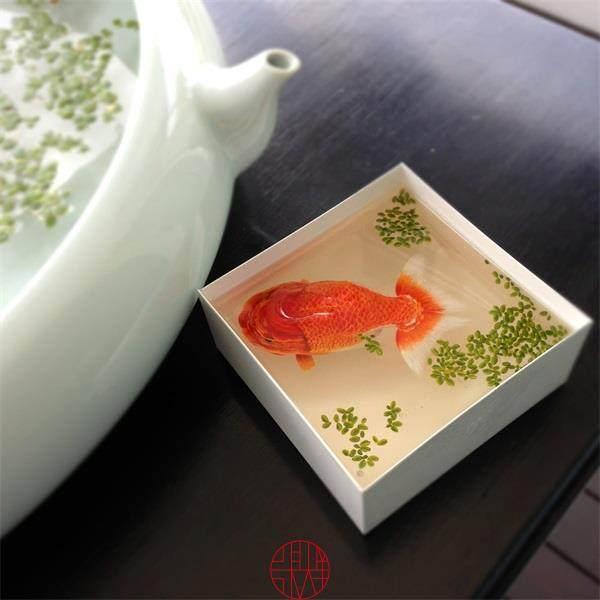 看看大师是如何画金鱼的_mmexport1413602458737.jpg