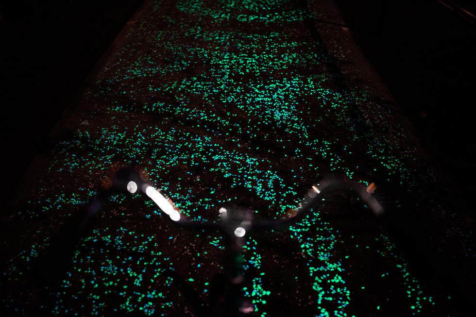 """荷兰建世界首条夜光自行车道 """"梵高星夜""""铺路,_丹-罗斯格德也致力于改进涂料技术,使涂料更亮,颜色选择更多,帮助减少城市光污染 ..."""