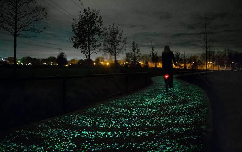 """荷兰建世界首条夜光自行车道 """"梵高星夜""""铺路,_11070686_980x1200_0.jpg"""