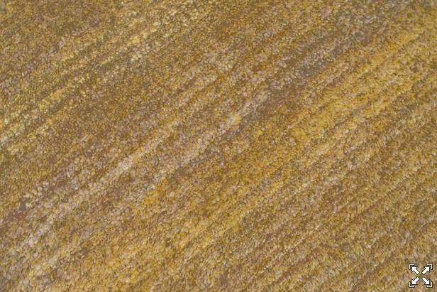 国外最新精品地毯768P(继续更新209P精品)_20141120_181220_194.jpg