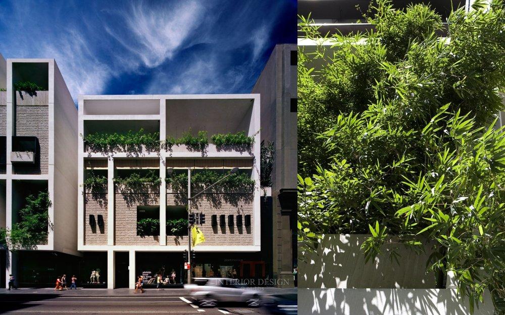 伍兹贝格建筑设计公司_ivy_N23_N3.jpg