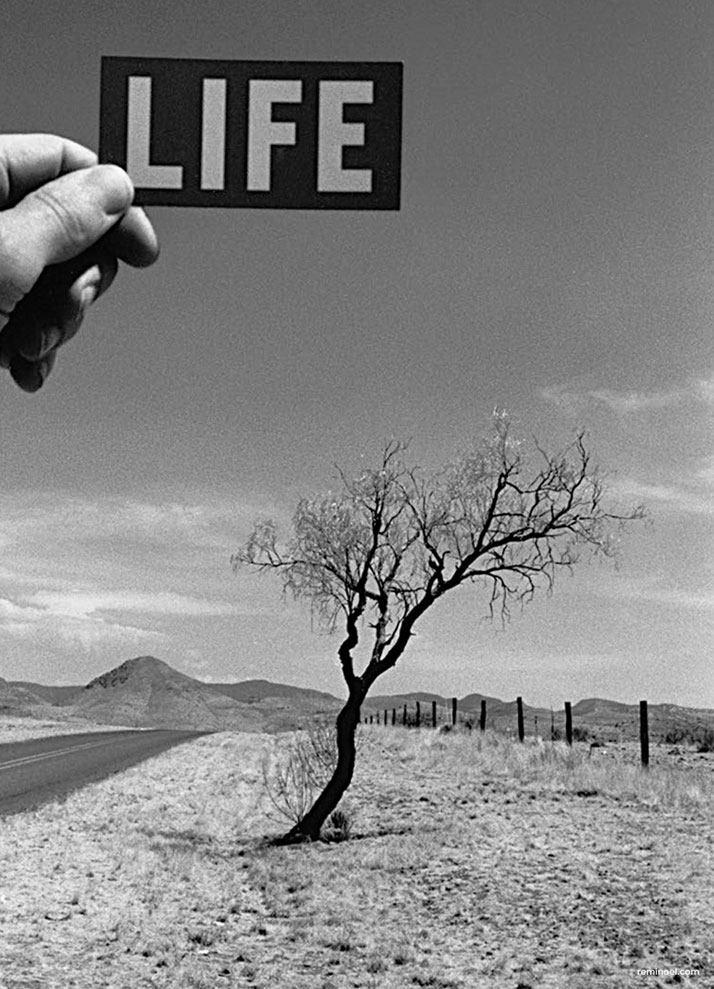 Photographer Rémi Noël's Magical Road Trip Across America_20150515_104644_053.jpg