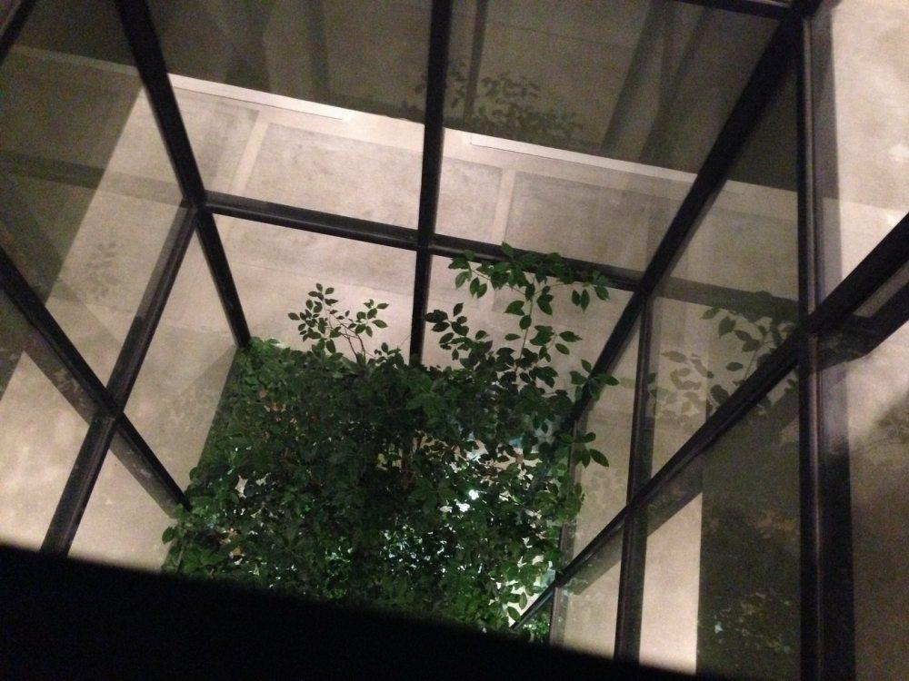 厦门乐雅无垠酒店Hotel Wind自拍 分享_IMG_2602.JPG