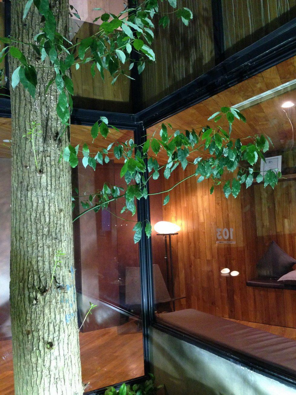厦门乐雅无垠酒店Hotel Wind自拍 分享_IMG_2674.JPG