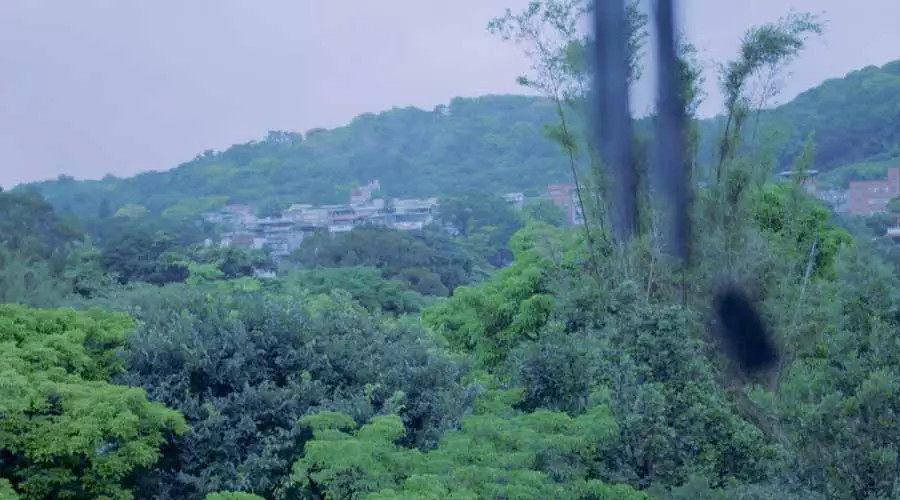 全台湾最有江南范儿的园子_现在茶室所在的位置,早在春余园子开工之前就选定了,因为主人觉得在这里看到的风景最好。 ...