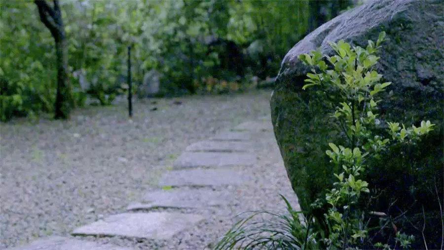 全台湾最有江南范儿的园子_在开发春余园子的时候,从地下挖出了很多大石头。很多人会为此感到头痛,但对唐白余来说这些石头都是宝贝。 ...