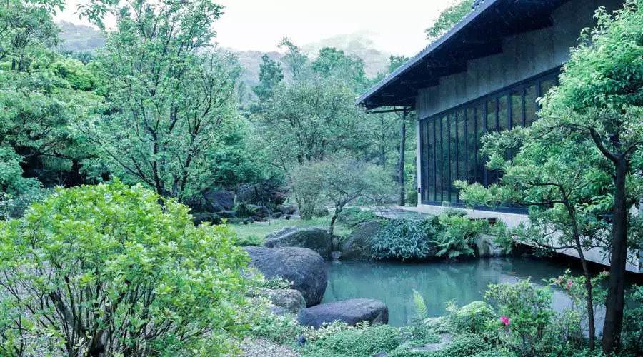 全台湾最有江南范儿的园子_春余园子里的植物都是唐白余在附近农舍买来的。他不喜欢太贵气的植物,太多的花,或是太多雕琢的东西,只用 ...