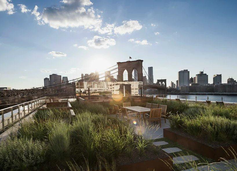 布鲁克林公寓顶上的屋顶花园_psb (2).jpg