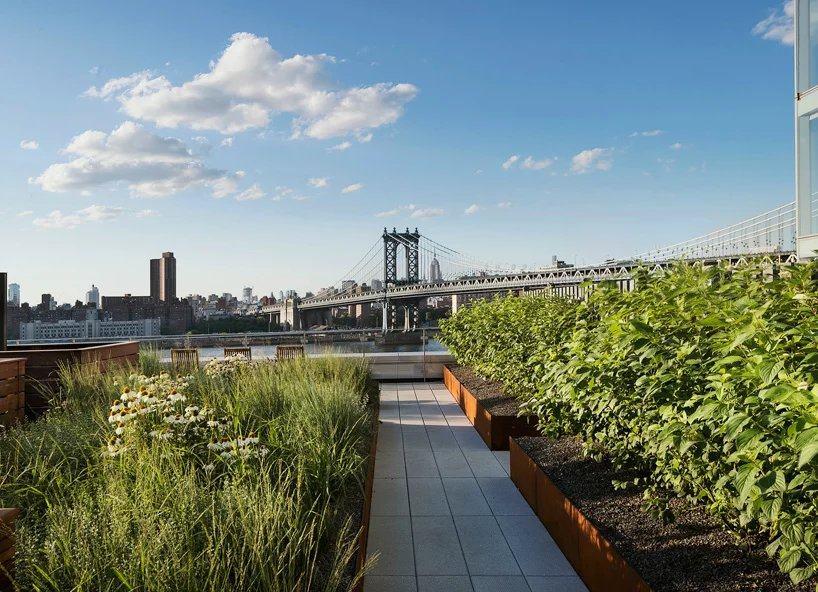 布鲁克林公寓顶上的屋顶花园_psb (3).jpg