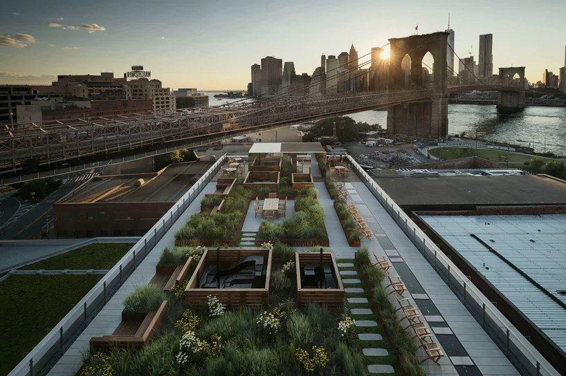 布鲁克林公寓顶上的屋顶花园_psb (23).jpg