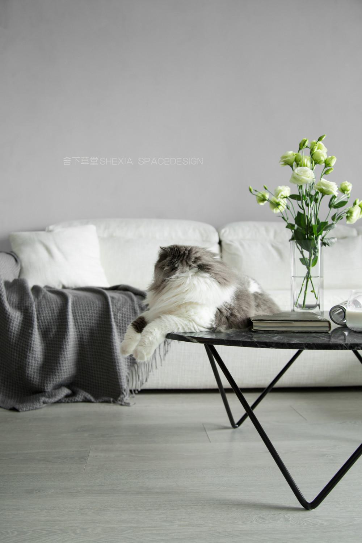 客厅沙发小景1.jpg