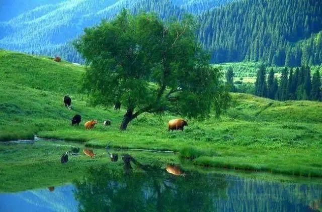 """这些让人欲罢不能的自驾天路,是新疆最超值的""""景点""""-14.jpg"""