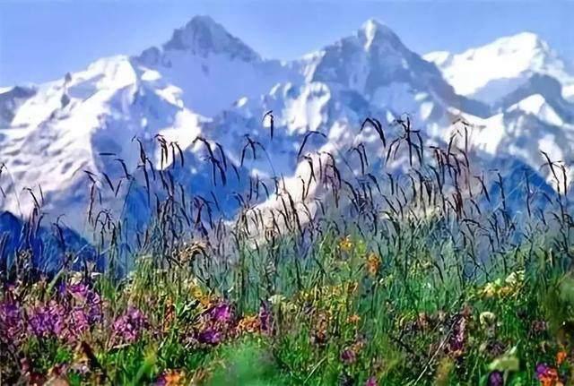 """这些让人欲罢不能的自驾天路,是新疆最超值的""""景点""""-16.jpg"""