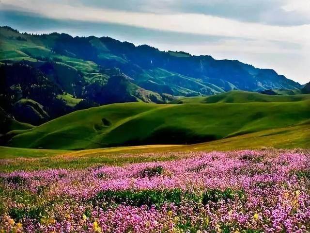 """这些让人欲罢不能的自驾天路,是新疆最超值的""""景点""""-20.jpg"""