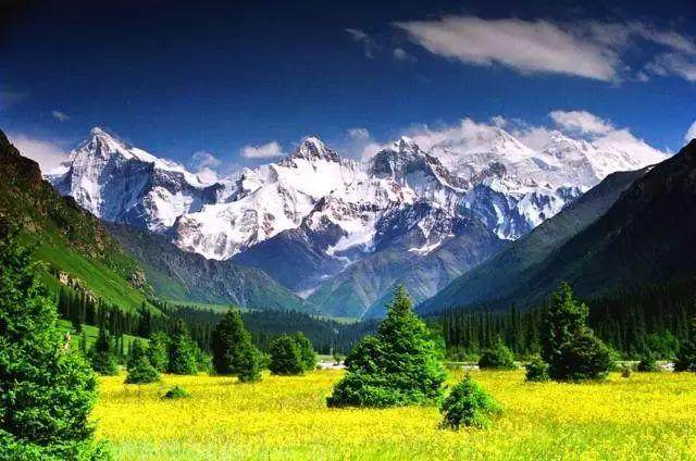 """这些让人欲罢不能的自驾天路,是新疆最超值的""""景点""""-24.jpg"""