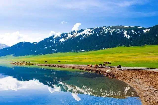 """这些让人欲罢不能的自驾天路,是新疆最超值的""""景点""""-31.jpg"""