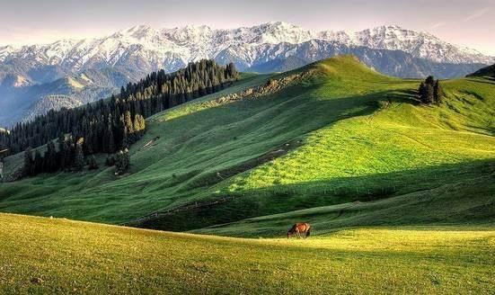 """这些让人欲罢不能的自驾天路,是新疆最超值的""""景点""""-33.jpg"""