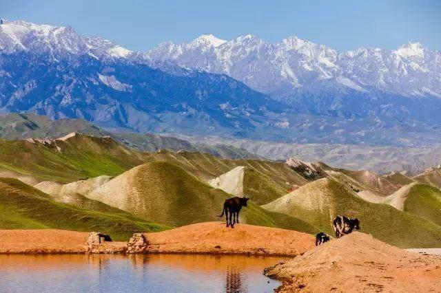 """这些让人欲罢不能的自驾天路,是新疆最超值的""""景点""""-36.jpg"""