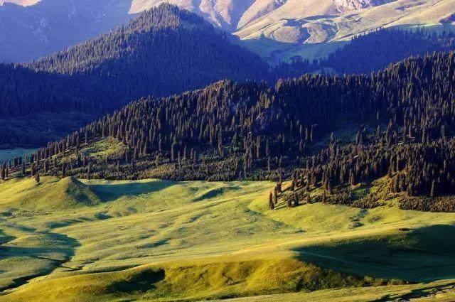 """这些让人欲罢不能的自驾天路,是新疆最超值的""""景点""""-42.jpg"""