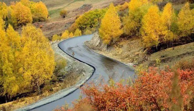 """这些让人欲罢不能的自驾天路,是新疆最超值的""""景点""""-57.jpg"""