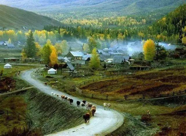 """这些让人欲罢不能的自驾天路,是新疆最超值的""""景点""""-62.jpg"""